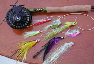 fly tips, Fly Fishing Bait